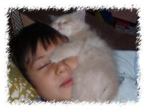 Мой сын Михаил вместе с котёнком Кузей